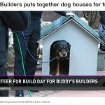 Buddy's Builders on 9News